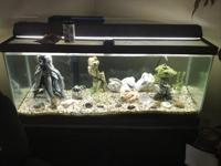 Very nice complete fish tank the only thing missing is