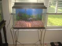 20 Gallon fish tank kit: Includes a Whisper filter,