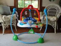 Fisher-Price Jumperoo - Laugh 'n Learn We bought this