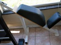 Fixed Upright Weight Bench With Padded Back Support -