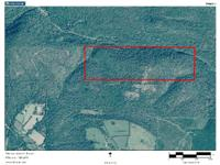 REDUCED !!! Caves, hunting cabin, 120 Acres, Owner