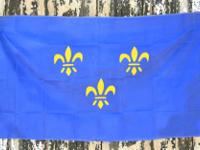Type: OutsideThis popular 3 x 5 foot flag is