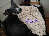 My story Flora is looking for her forever homeShe is a