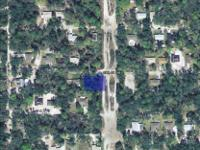 This lot in Seville, Florida totals to 2 Acres on the