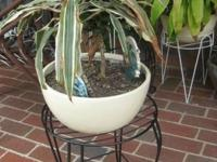black wrought iron plant stand / holder flower pots