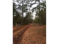 Bank Foreclosure! 93.75 +/- acres in Monroe County, GA
