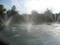 16' high spray, 100' of cord, 120 volt, 1/2hp pump with