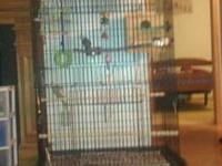 I have four cockatiels for sale with a huge cage, food,