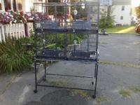 Multi device quad cage by A&E bird cages for sale. The