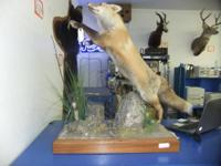 Price: $500 OBOI have for sale a fox mount with a rock