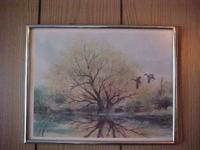 "Framed Print Tree reflecting in pond 11""x 14"" nice"