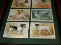 COMPLETE SET OF 6 ENGLISH VINTAGE TRADING CARDS. EACH