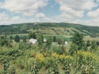 This beautiful Delaware County home in the Catskill