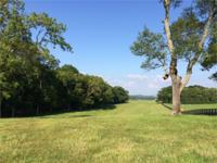68+/- level acres in exclusive Old Hillsboro Rd.