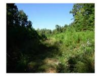 Great Investment Opportunity! Two heavily wooded tracts