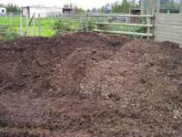 Free Organic Fertilizer/Composted Horse Manure (North