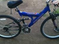 Free Spirit (Descent Pro) 21 speed mountain bike, used