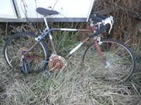 this is a vintage free spirt bicycle that would make a