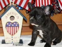 Thank you for your interest in our little one Franklin.