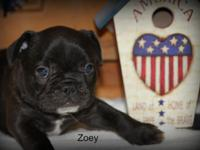 Thank you for your interest in our little one Zoey. We