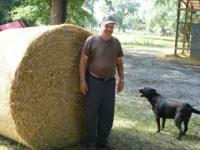 HORSE QUALITY EXTRA LARGE 5 FOOT PLUS ROLLS, VERY