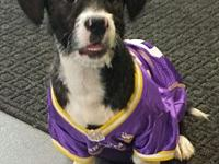 Frodo's story Charming and a bit quirky, this guy will