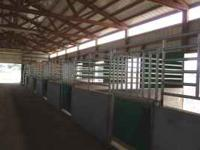 Large Stalls & Turnouts, Individual Tack Lockers. Twice