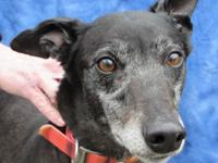 Fuzzys Pebbles is a Beautiful Black Female For more