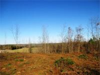 HUGE PRICE REDUCTION & ADDITIONAL ACREAGE! This great