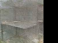 For Sale: Galvanized Metal Cages Dimensions: 2' x 2' x