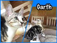 Garth's story Name: Garth DOB: April 2018 This handsome