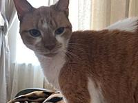 Gatita's story Sweet senior girl looking for that