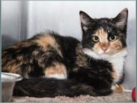 Genevieve's story $97.50 FEE INCLUDES: