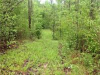 Secluded 40 acres off Hank Williams Highway off Highway