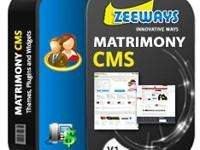 �Wants to start MATRIMONIAL website like Shaadi.com OR