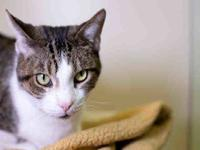 GETER's story Sweet Geter is a silly, lovable girl!