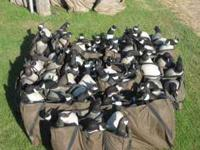 I have 3 dozen GHG (Green Head Gear) decoys for sale