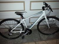Giant Escape 1 Hybrid Bike for sale $390. Size small
