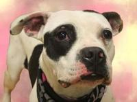 Gigi's story Hi my name is Gigi! I'm a sweet little