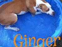 Ginger's story Please understand we must conduct home