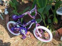 "Girl Talk 16"" Bicycle - Pink and Purple Bright and"