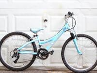 This is a girl's trek mountain bike. 21 speeds. 24""