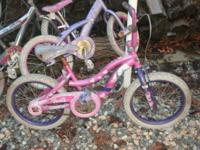 They all need love and attention. I have 3 girls bikes
