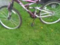 I have 2 girls bikes for sale I bought them last year