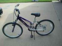 We have a girls roadmaster bike. Not sure what the