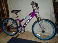 Girls sport 18 speed moutian bike Purple metalic frame.