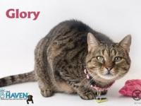 Glory's story Meet Glory! This petite, sweet, and