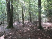 Outstanding timber investment and recreational tract