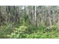 Here Is Your Chance To Own 4 Acres (Adjoins 6 Acres MLS