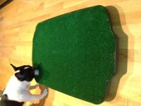 Simple Science is built-in. Go-Doggy-Go Dog Potty TM;